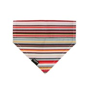 Stripe Rainbow Bandana