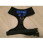 Black Harness With Small Blue Sequin Bow