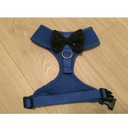 Blue harness with a bow