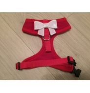 Red Harness With Small White Sequin Bow
