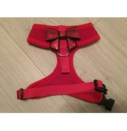 Red Harness With Small Red Sequin Bow