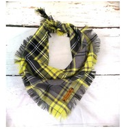 Lemon & Lime Frayed Bandana