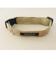 Gold Splash Collar