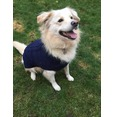 NAVY Knit Crochet Dog Jumper