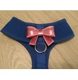 Blue Harness With Small Pink Sequin Bow